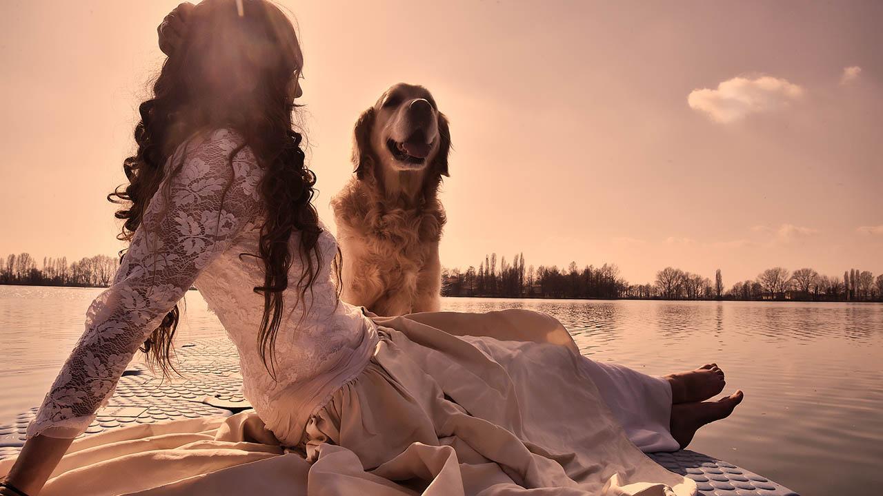 greendogclub – wedding dog service 4