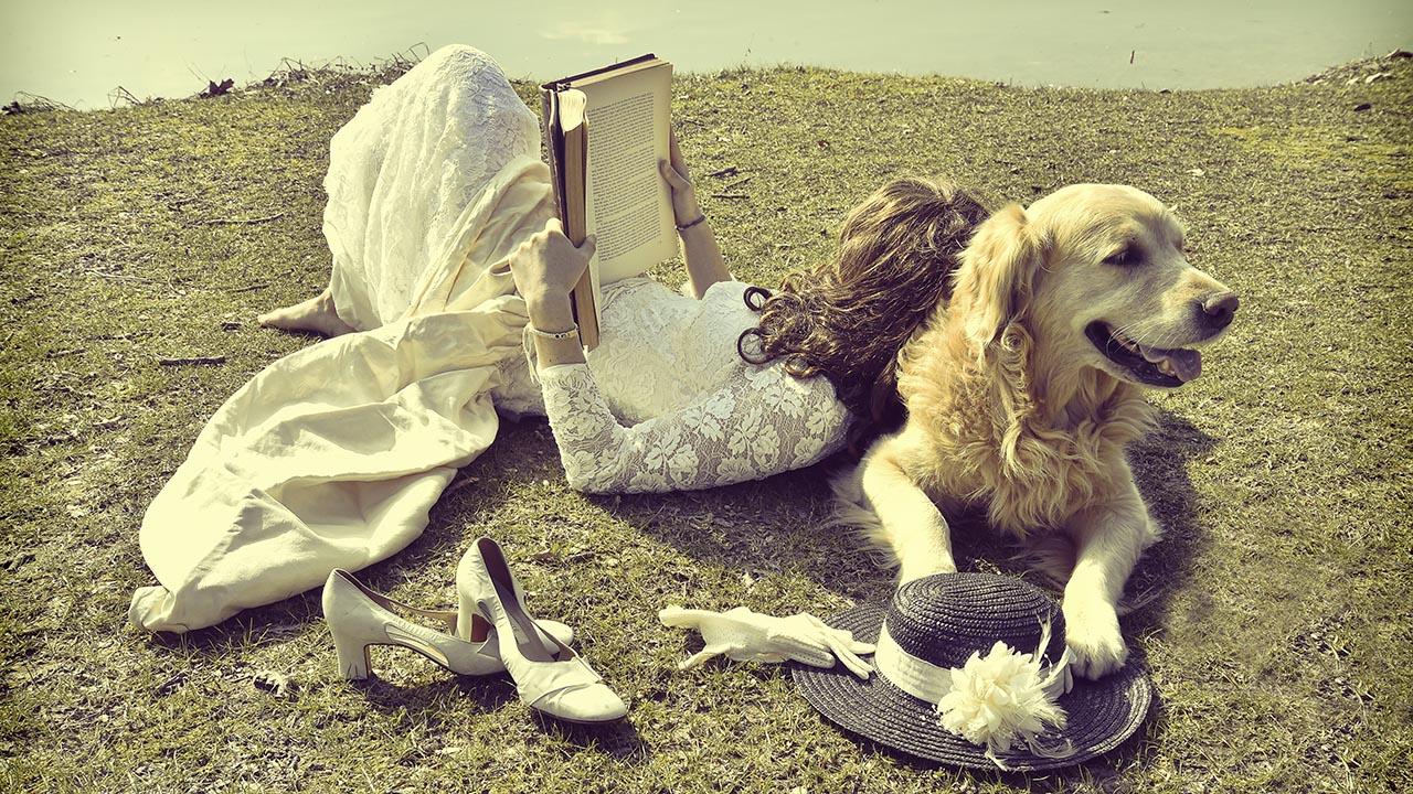 greendogclub – wedding dog service 5