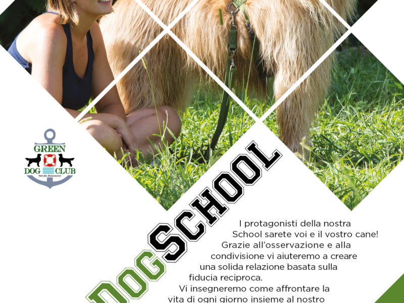 THE DOG SCHOOL